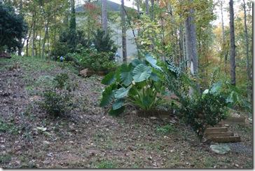 hillside landscaping 1