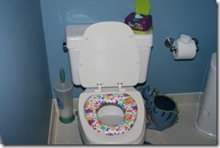 MLIs potty station